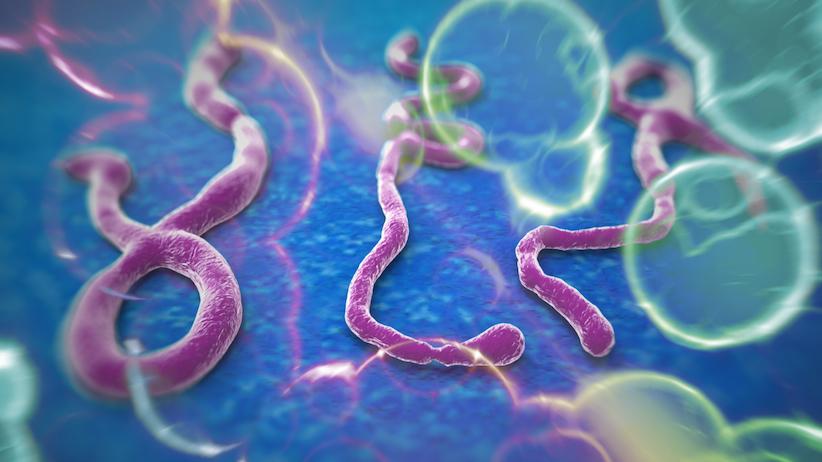 Ebola_crisis